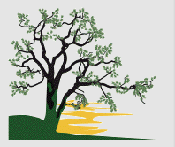 Image of Wildwood Retreat