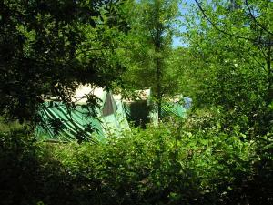Image of Tent Cabins